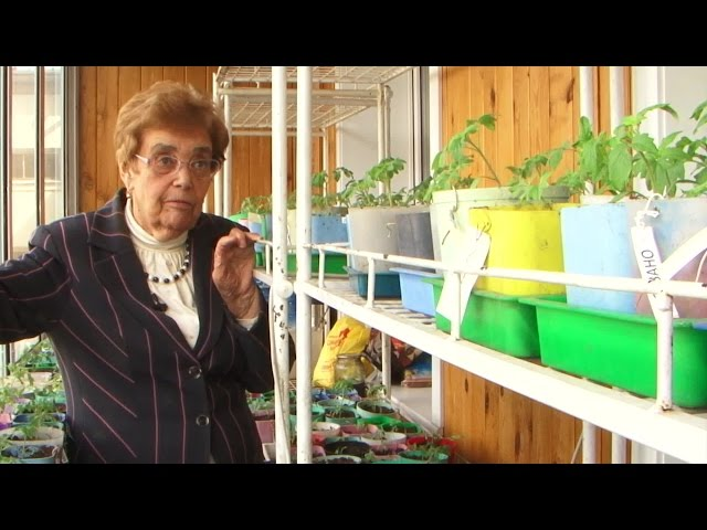 О секретах богатого урожая