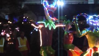 preview picture of video 'Fantastisch verlichte carnavalsoptocht Hengelo'