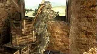 Mw3 Face Off Glitches Free Video Search Site Findclip