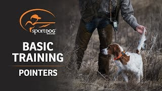 Basic Training :: Pointers