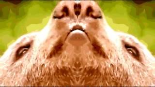 Video Scaramanga - Medveď (Bear)