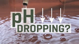Why is my hydroponic nutrient solution pH dropping?