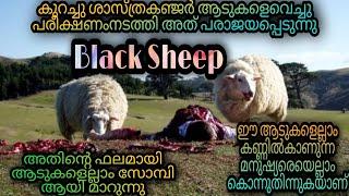 Black Sheep 2006 Full Movie Malayalam Explanation  @Movie Steller  Movie Explained In Malayalam