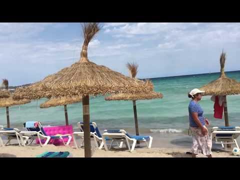 CBP vlogs Intro Video