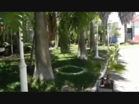 ALOJAMIENTO RURAL FINCA REAL DE NIEBLA en Huelva
