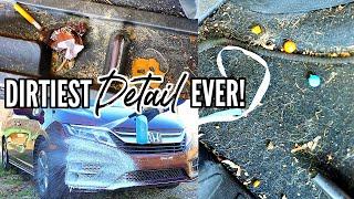Complete Disaster Interior & Exterior Car Detailing Transformation! Dirtiest Car Detailing Ep. 17