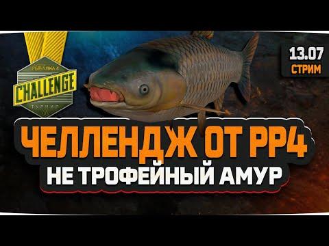 Русская рыбалка 4 — стрим на медвежьем озере.