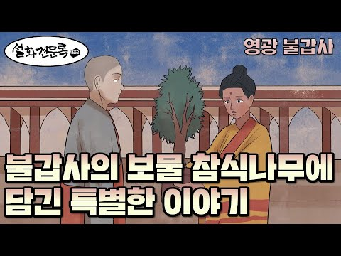 21.02.07 불교방송 설화견문록 시즌2(불갑사의 상징 참식나무에는 어떤 특별한 사연이 담겨 있을까?)