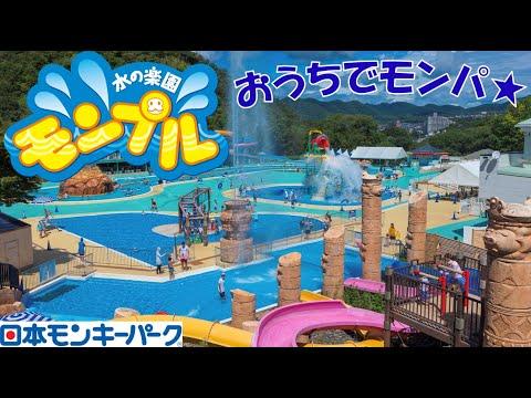 【おうちでモンパ★】水の楽園 モンプル (日本モンキーパーク)