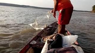 preview picture of video 'Pescaria com meu irmão Rio Amazonas terra nova'