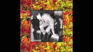 Dj Snake - Invincible (Audio)