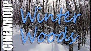 Winter Woods | Cinewhoop | Hero 8 | 4K