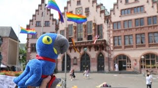 Hope Returns to Germany - Hope for Parrot Conservation