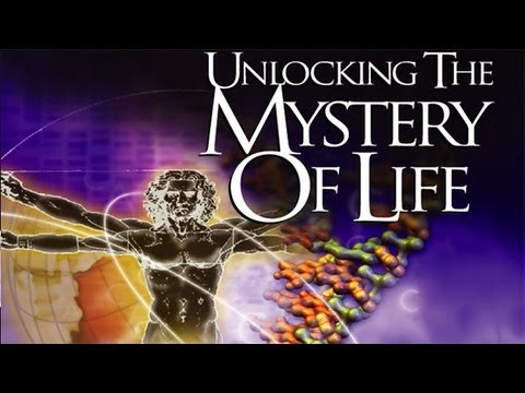 º× Free Watch Unlocking the Mystery of Life