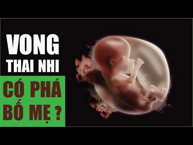 Vong Linh Thai Nhi Có Theo Bố Mẹ Phá Không ? [HECAVI.NET]