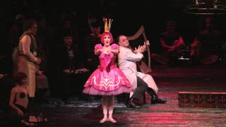 Metropolitan Opera. Kaks visiooni