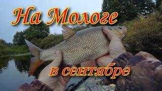 Рыбалка в бежецком районе тверской области