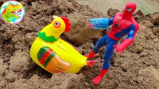 CHICKEN LAYS EGG. Funny spiders and animals - I112B ToyTV children's toys