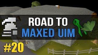 osrs ironman farming - मुफ्त ऑनलाइन वीडियो