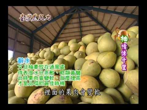 臺灣農民力第49集