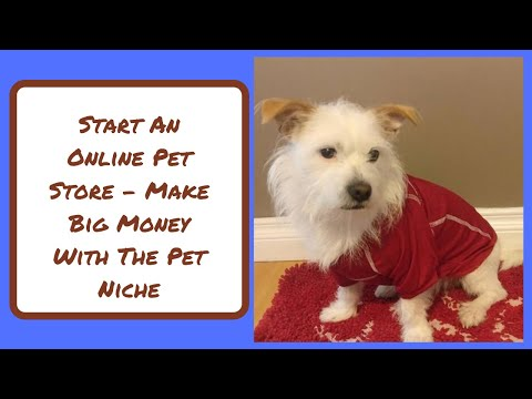 , title : 'Start An Online Pet Store ( Billion Dollar Niche You Need To Get Into Now)