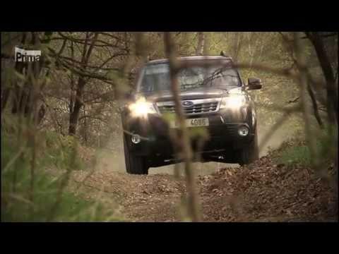 Opel omega das Benzin 2.0 16v der Ersatz des Riemens grm