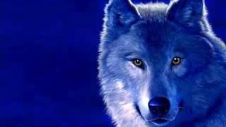 Волки и Оборотни, Одинокие волки