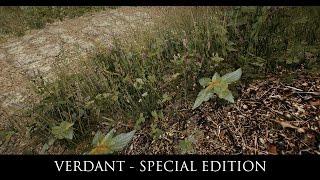 Skyrim SE Mods: Verdant - A Skyrim Grass Plugin
