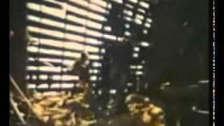 Trailer of Northville Cemetery Massacre (1976)
