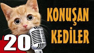 Efsanevi Konuşan Kediler serisinin 20. videosunda yine kahkahalar bizleri bekliyor. Komik kediler şapşallıkları ve sakarlıklarıyla yine bizleri gülümsetiyor. Halen Abone olmayanları Pisi TV ye abone olmaya bekliyoruz....