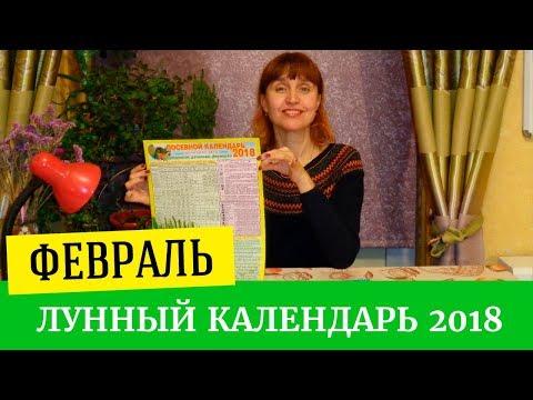 Гороскоп прогноз на 2017 год огненного петуха