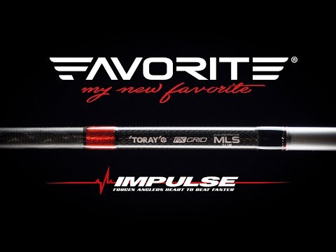 Обзор Favorite Impulse New