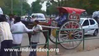 Horse carts or tongas at Mysore