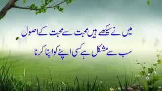 2 Lines Mohabbat Poetry | Mohabbat Sher-o-Shayari -  SHER-O-SHAYARI