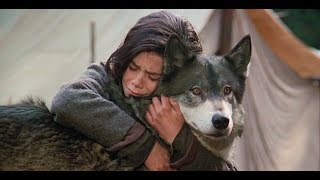 女孩在斗狗场救了一只野狼,野狼为报恩叼来一只野兔,并一路守护着女孩