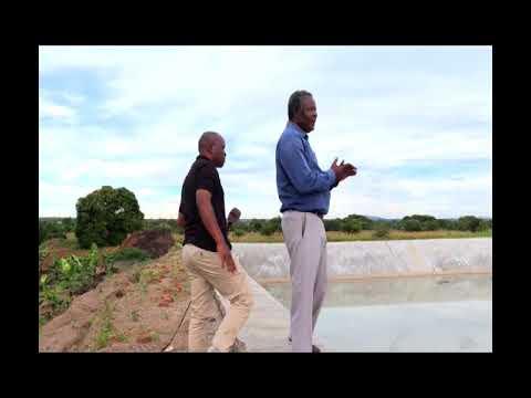 His Excellency, Dr. Napoleon Dzombe, Ambassador wa ma Entrepreneurs ku Malawi