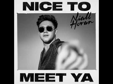 Niall Horan - Nice To Meet Ya (Audio)