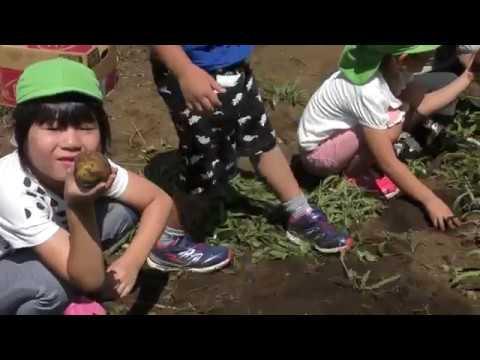 Hanasaki Nursery School