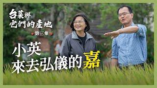 【 台菜與它們的產地 feat.鄭弘儀】台灣米冠全球!總統坐上大型農機體驗農家日常!