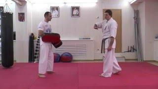 Fighting Techniques Alexander Eremenko - Ushiro Mawashi+Ushiro Geri