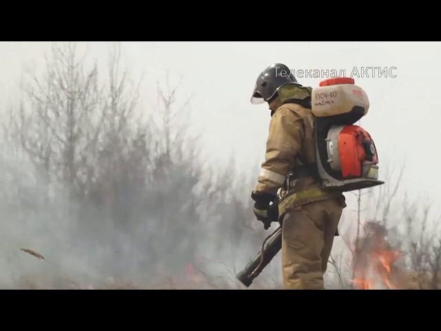 Пожарные жгут сухостой