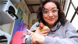 Watch This BEFORE You Buy Or Build A CHICKEN COOP