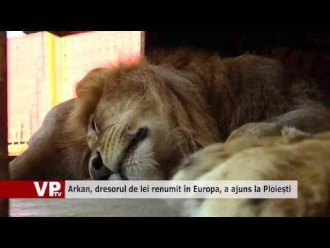 Arkan, dresorul de lei renumit în Europa, a ajuns la Ploiești