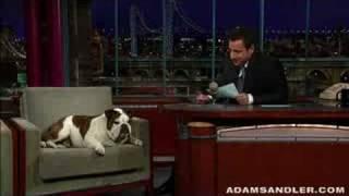 Adam Sandler hosts the Letterman show