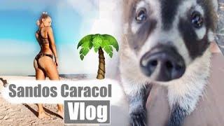 Hotel Sandos Caracol - Eco Resort & Spa 🏝 Playa Del Carmen / Mexico 2018 Vlog #1