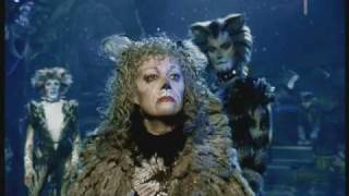 Grizabella, The Glamour Cat