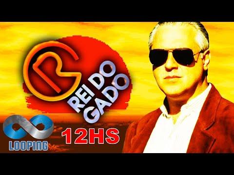 Looping - Rei do Gado (12hs)