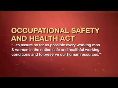 mp4 Managing Employee Health And Safety, download Managing Employee Health And Safety video klip Managing Employee Health And Safety