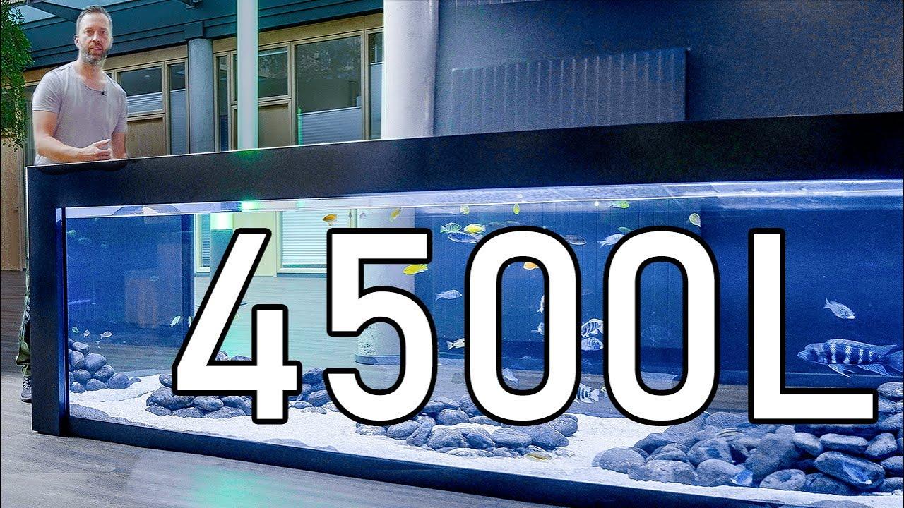 3,5m XXXL Firmen Aquarium!