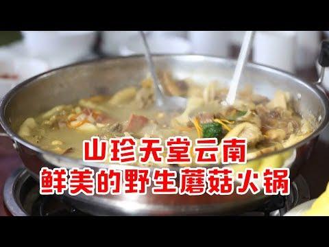 山珍的天堂云南,鲜美的野生蘑菇火锅只有这里才能吃到!